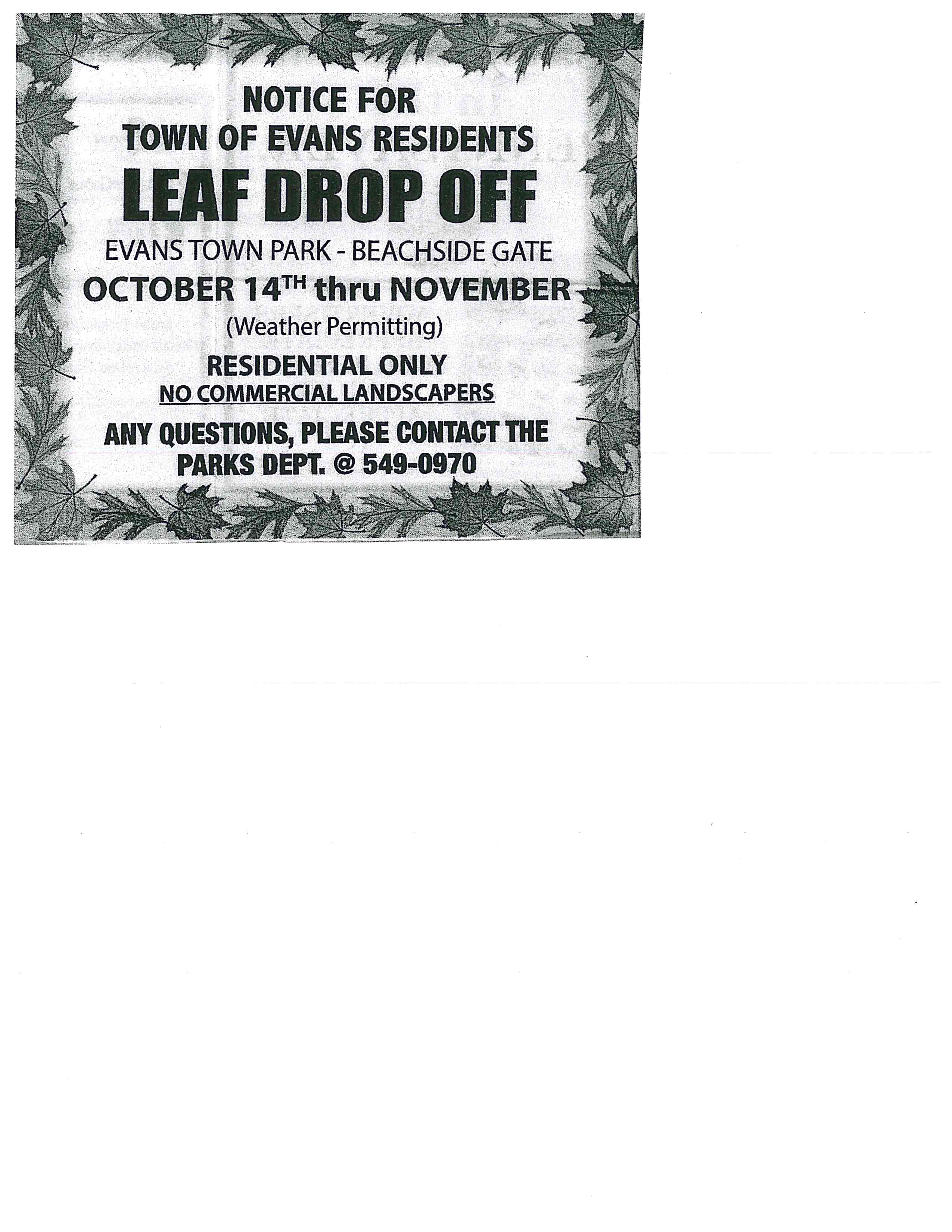 Leaf Drop Off 2016 10